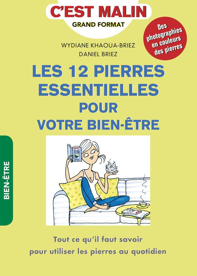 Les 12 pierres essentielles pour votre bien-être, c'est malin - Daniel Briez, Wydiane Khaoua - Éditions Leduc